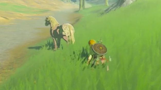 zelda-horse-taming-1484333222326_large
