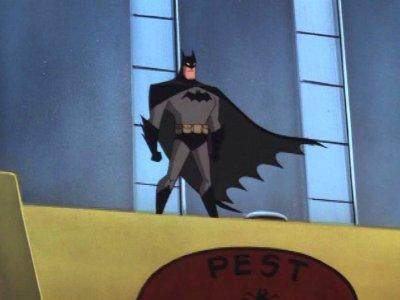 batman arrives